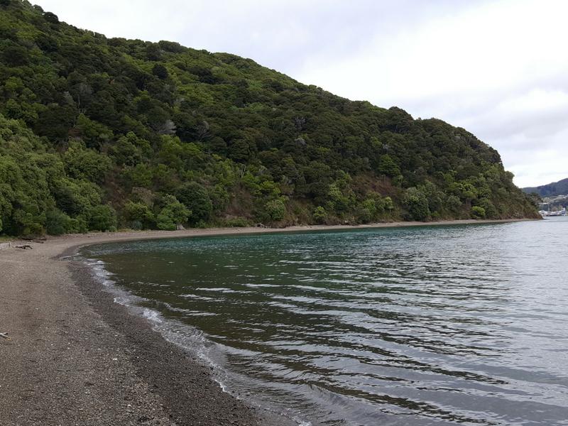 New Zealand - Picton Bob's Bay