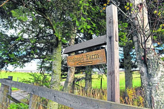 Boghead Farm, Lumsden.      Picture by Kami Thomson