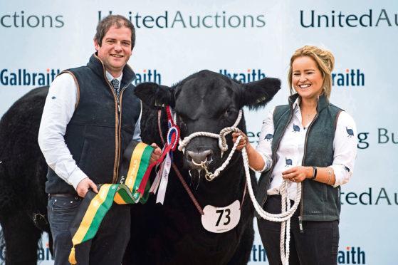 Hugh and Cara Thomson with their 13,000gn Angus bull.