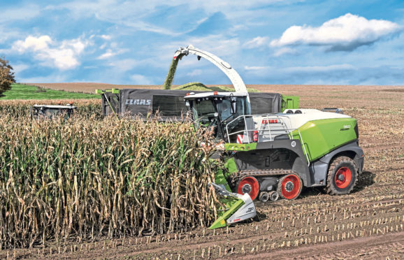 Claas Jaguar 960 Terra Trac is the first series production forage harvester available on tracks instead of wheels. Picture for Peter Hill machinery story.
