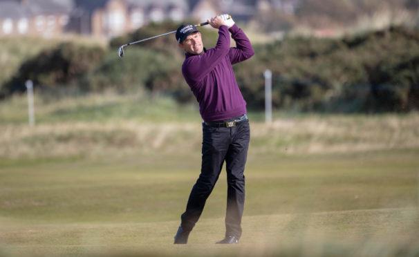 Ireland's Padraig Harrington  wants to be the next European Ryder Cup captain
