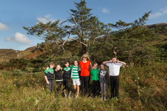 Netty's Tree on Eriskay