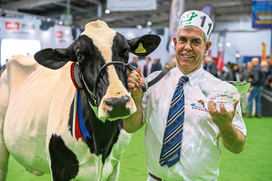 The SuperCow winner.