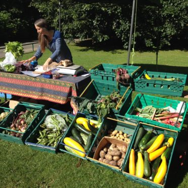 The group sells excess allotment fruit and veg at market stalls in Seaton and Duthie parks.