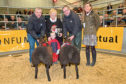 Kenneth Sutherland, (left), his two year old son Jack and Stephen Sutherland receiving the trophy from Joanna Mackay, who sponsored the competition. Looking on is buyer Jennifer Lamont.