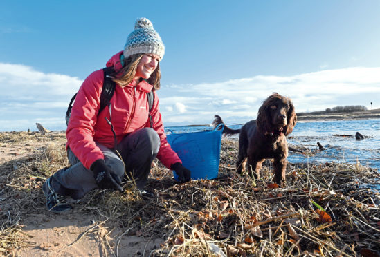 Marine biologist Lauren Smith organises beach clean ups and is often helped by her spaniel Tattie.