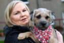 Alison Milne, who was attacked by a dog, with her border terrier Brodie