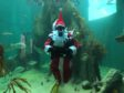 Santa at Macduff aquarium