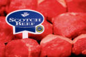 A new TV advert is being created to promote Scotch Beef.