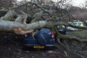 A tree crashed through a car in Aberdeen as high winds buffeted the region on Monday