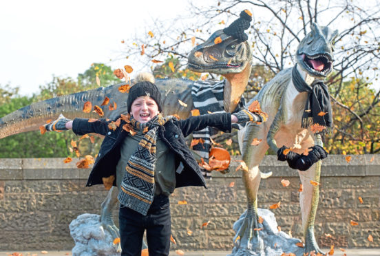 Ollie Thornton, age 8, making friends with a couple of dinosaurs at Dynamic Earth, where Fabulous Fossil February is in full swing.