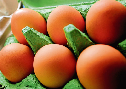 The egg producer posts a drop in profits.