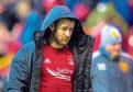 Aberdeen midfielder Niall McGinn faces ankle ligament surgery.