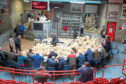There has been a 20% drop  in the number of sheep going to auction over the past year