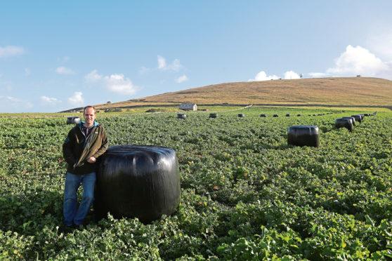 Shetland farmer Jamie Leslie