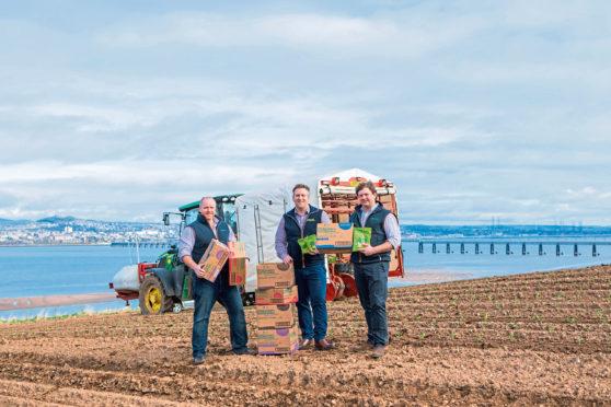 Picture shows, left to right Andrew Faichney (Managing Director of Growers Garden), Alan Wallace (Commercial Manager of Growers Garden) and Martin Jenkins (Operations Manager of Growers Garden) at Peacehill Farm, Wormit.
