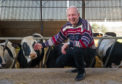 Stockman Stan Copland with his cows