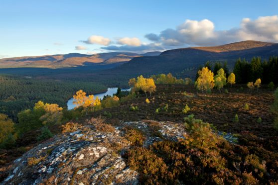 Cairngorms. Photo from Cairngorms National Park Authority