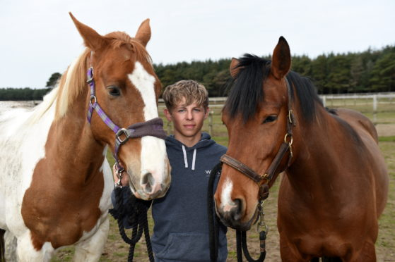 17-year-old teenager Reagan McHardy turns his back on university to instead follow his dream by becoming the owner of established Elgin horse-riding centre Equus, near Elgin.  Picture by KENNY ELRICK     11/04/2019