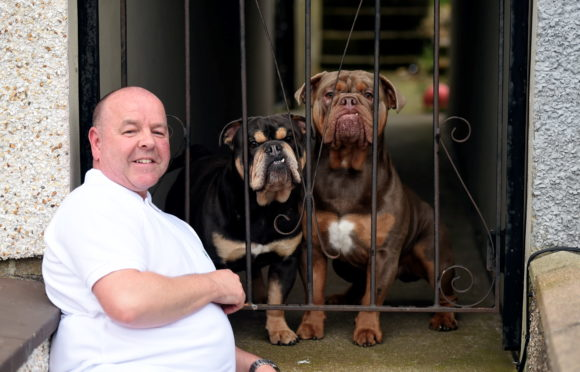 David Clark at his home with his dogs Butch and Bruno.