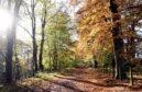 The Deeside Way in Drumoak