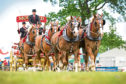 Clydesdale horses at the Royal Highland Show