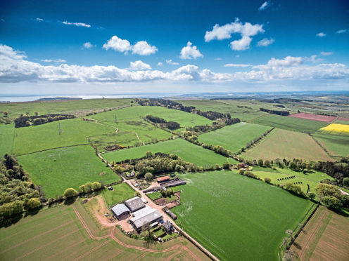 Johnston Mains Farm