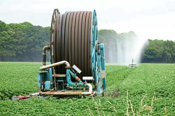 Sepa has issued irrigation advice to growers.