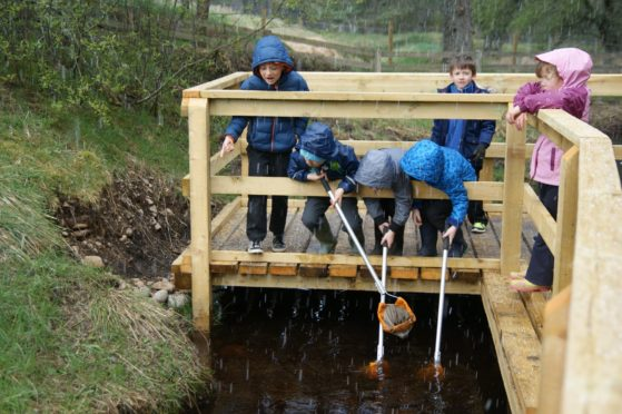 Pond dipping from the new platform at Abernethy school, Nethy Bridge.