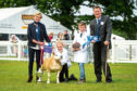 Judges Patsy and Ian Hunter with the young handler winners