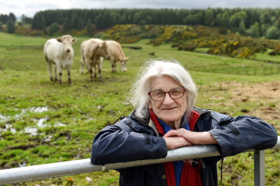 Claire Bruce with her cows. Picture by Kenny Elrick.