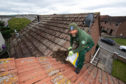 Rob Teasdale clears a gull's nest off the roof of a house in New Elgin today.