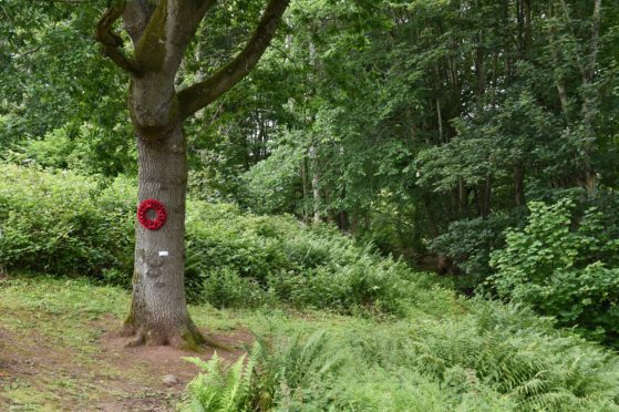 A special service took place at a First World War memorial tree, 100 years to the day it was first planted.