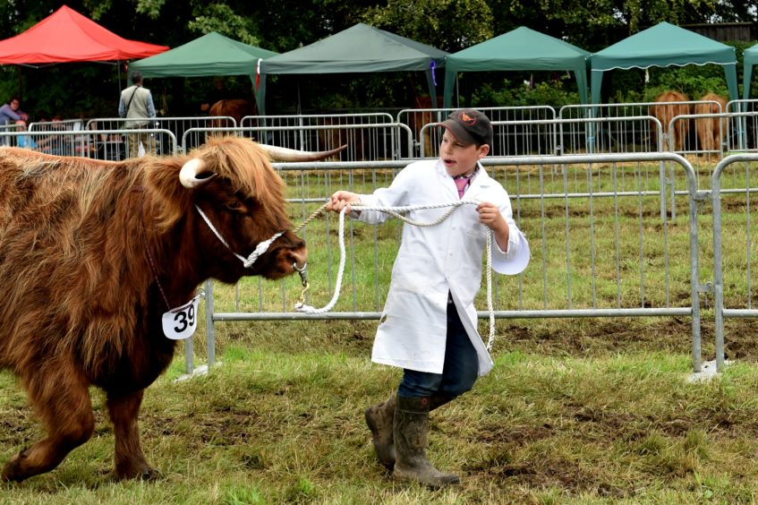 Thousands take on mud and glaur to enjoy 172nd New Deer Show