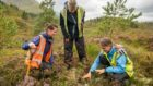 Ullapool Community Trust wants to meet with the community to discuss the ownership of Lael Forest