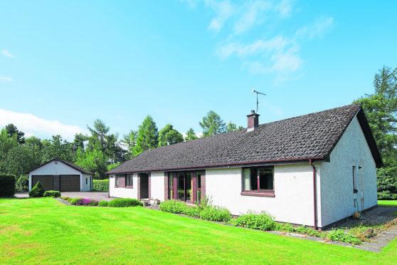 Rowan Glen, Upper Braefindon, Culbokie Rowan Glen, Culbokie