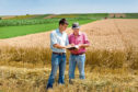 There's much to consider when passing on the tenancy of a farm to another person
