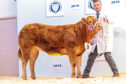The champion from Barry Paterson sold for £4,000 to the judge.