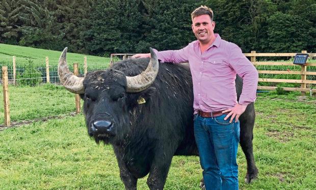 Steven Mitchell of The Buffalo Farm