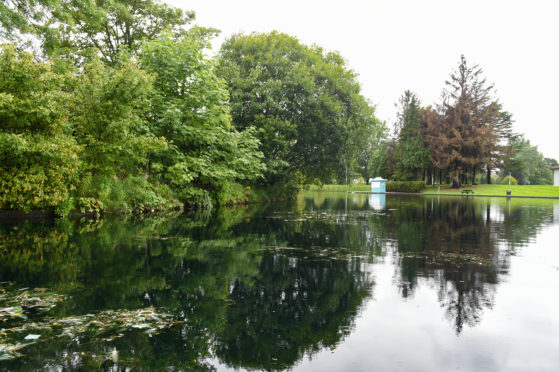 Cooper park in Elgin where Algae is reported to be present.