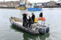 Police divers at Peterhead harbour searching with specialised sonar equipment.
