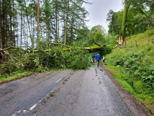 Fallen tree causes 154-mile detour for drivers | Press and Journal