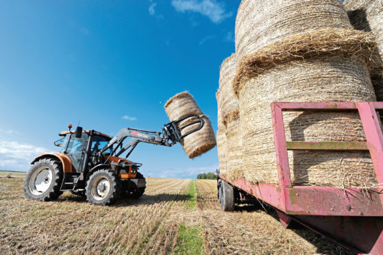 FAS said 50mm of rain could add 50kg or more to the weight of a 1.2m round bale.