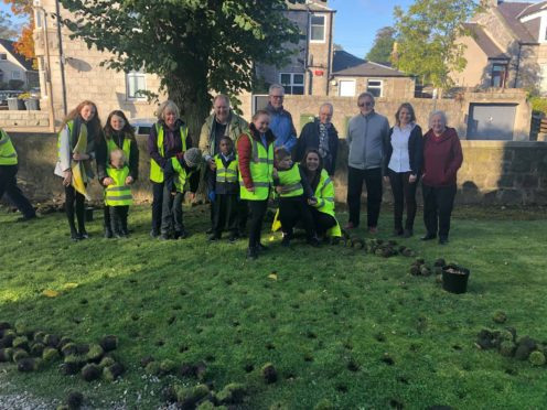 Annual bulb planting event held at Midstocket Church   Press and Journal