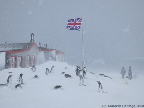 The remote island is home to thousands of penguins