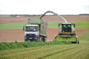 Chris McCullough Alfalfa feature   Handouts  Fourth cut alfalfa being harvested in France. PICTURE: Chris McCullough