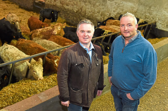 Scotland Minister Colin Clark visited Netherthird Farm, Rothienorman Picture of (L-R) Colin Clark and farmer Stuart Stephen.  Picture by KENNY ELRICK