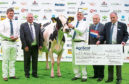 The annual AgriScot exhibition held at Ingliston, Edinburgh  In  Pic.......... Winning the Super Heifer Championship, Logan Estate Jazz,