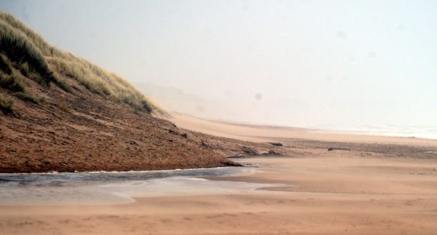 The man alleged Hay, 69, abused him a number of times in the car park at Balmedie Beach in Aberdeenshire.