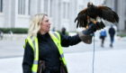 Sarah Calderwood and her Harris Hawk Saffron.